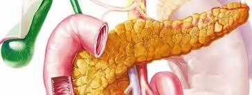 pankreasinsuffizienz